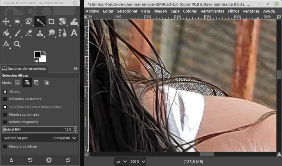 Selección de zonas de la imagen con la herramienta Selección difusa